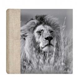 Fotoalbum 10x15/100 WILDLIFE šedé
