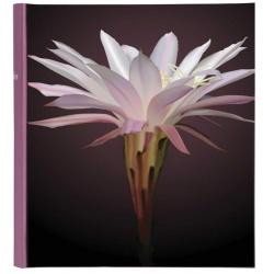 Klasické fotoalbum Botanics 29x32/100s. fialové